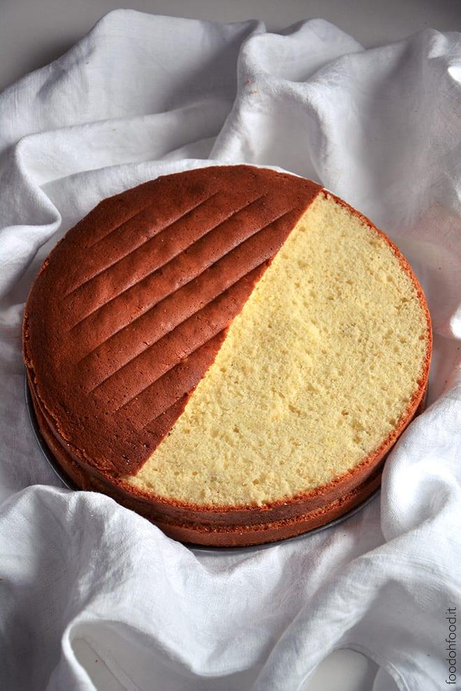 Molly cake - whipped cream sponge cake
