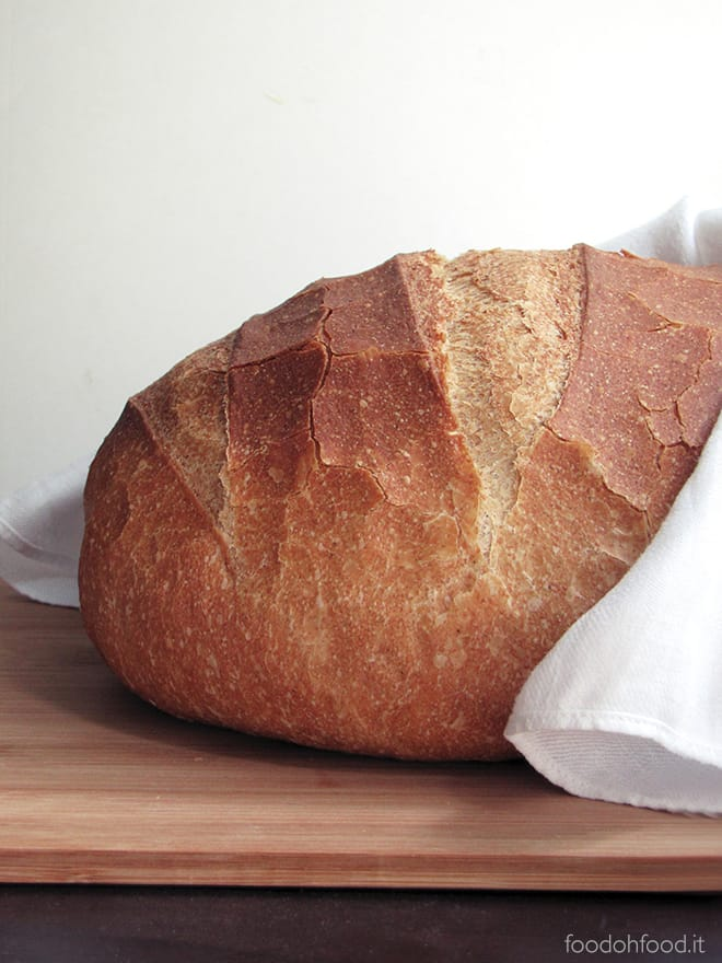 Easy everyday bread with spelt flour
