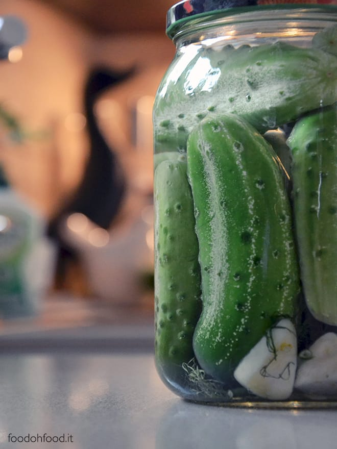 Polish cucumbers pickled in brine
